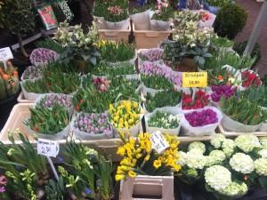 37.Amsterdam - marché aux fleurs