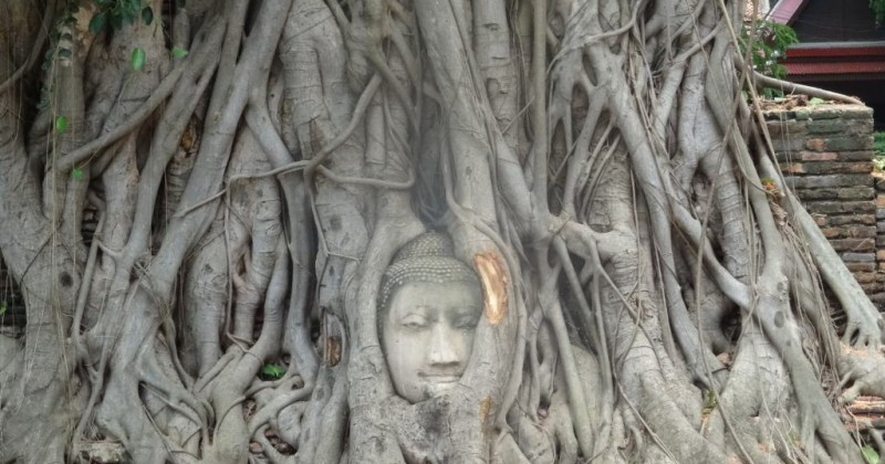 Le centre de la Thaïlande