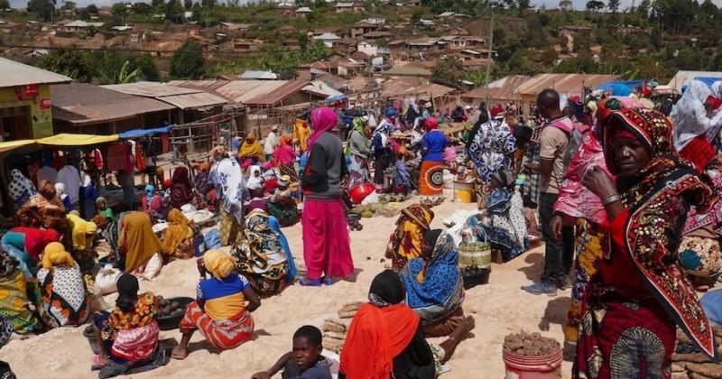 Tanzanie : la côte et les monts Usambara